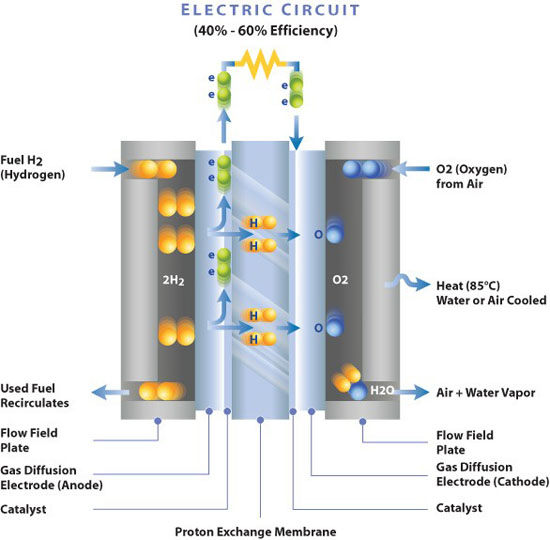 Fuel cell basic principle